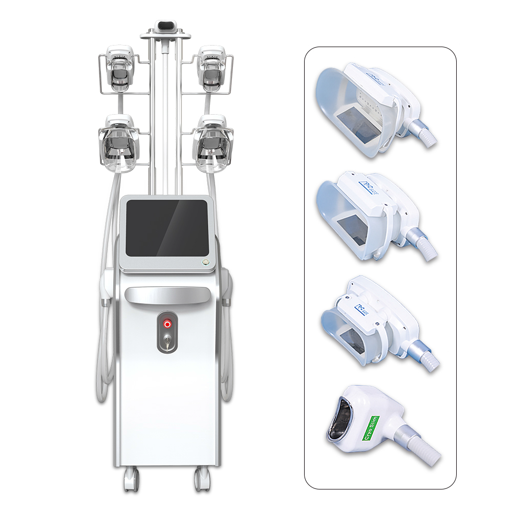 Cryolipolysis 5 ttes FR